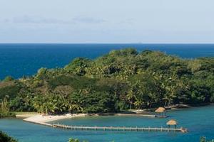 Dolphin Island (1)