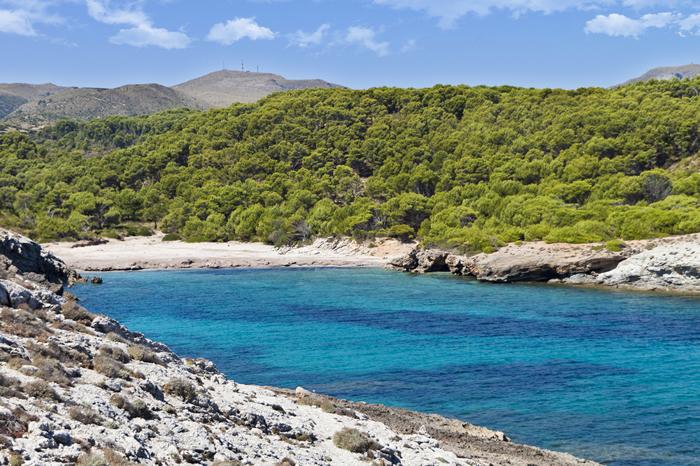Cala d'es Matzoc en Mallorca