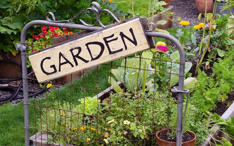 jardín reciclado