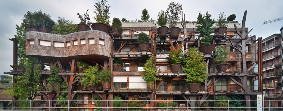 urban tree house la casa del rbol gigante