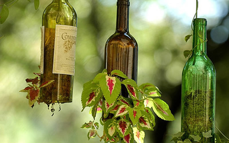 Unas bonitas macetas hechas a partir de botellas de vino recicladas - Milideas.net