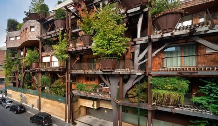 Urban Tree House: la casa del árbol gigante