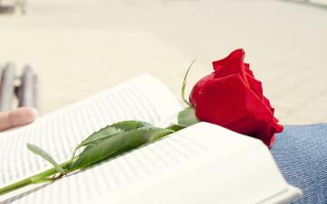 Rosa y Libro por Sant Jordi
