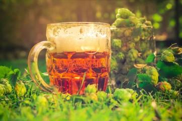 Ocho usos no convencionales de la cerveza