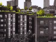 azoteas con jardines en Madrid