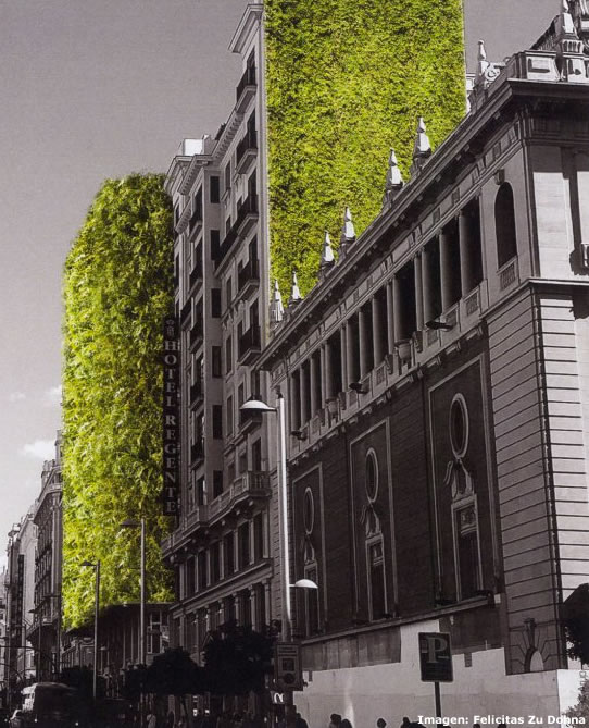 Jardín en fachada - Madrid