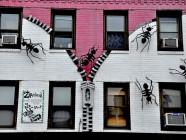hormigas en pisos en alquiler