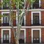 edificio pisos en alquiler