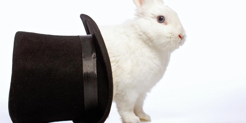 sombrero con conejo