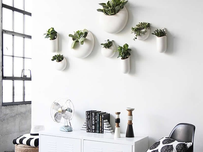 decorar paredes con plantas