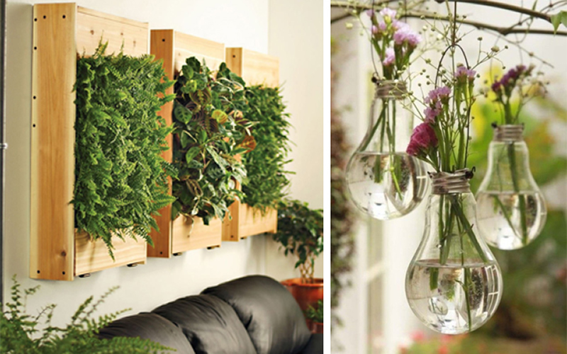 C mo decorar tus paredes low cost for Decoracion de jardines con plantas