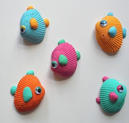 conchas de mar peces