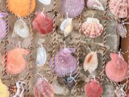 decorar casa con cosas que hay en el mar
