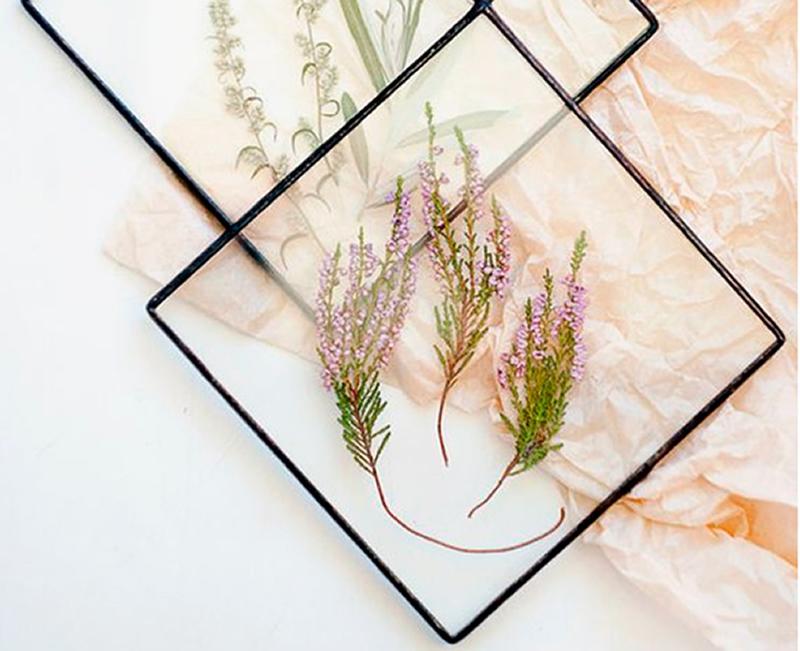 cuadro con flores disecadas