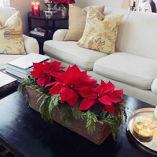 caja navidad